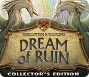 forgotten kingdoms: dream of ruin collector's edition