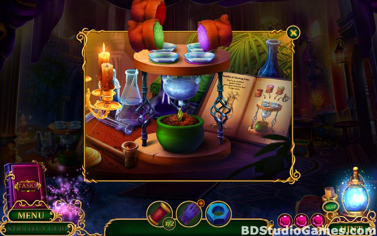 Enchanted Kingdom: Master of Riddles Collector's Edition Free Download Screenshots 17
