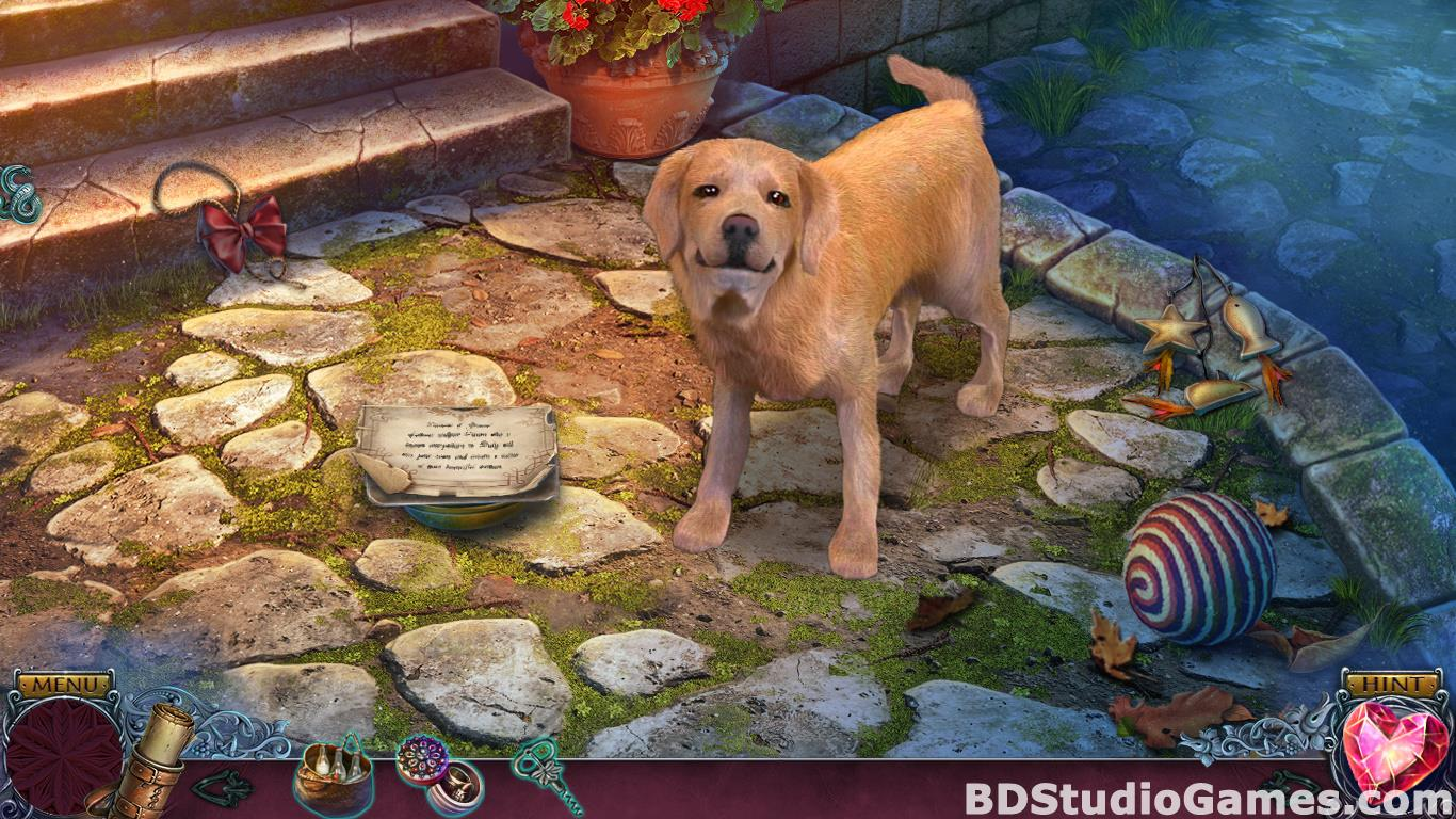 Immortal Love: Stone Beauty Collector's Edition Free Download Screenshots 12