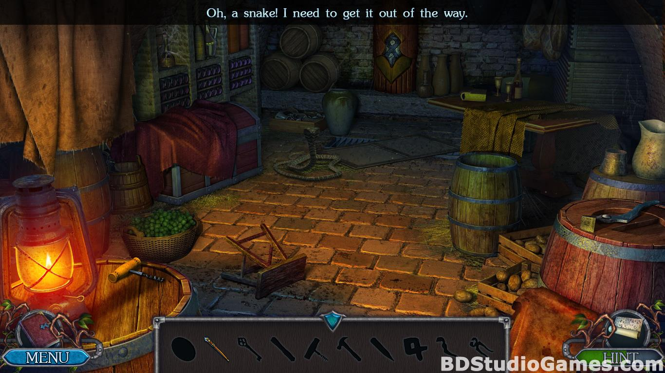 Legendary Tales: Stolen Life Collector's Edition Free Download Screenshots 17