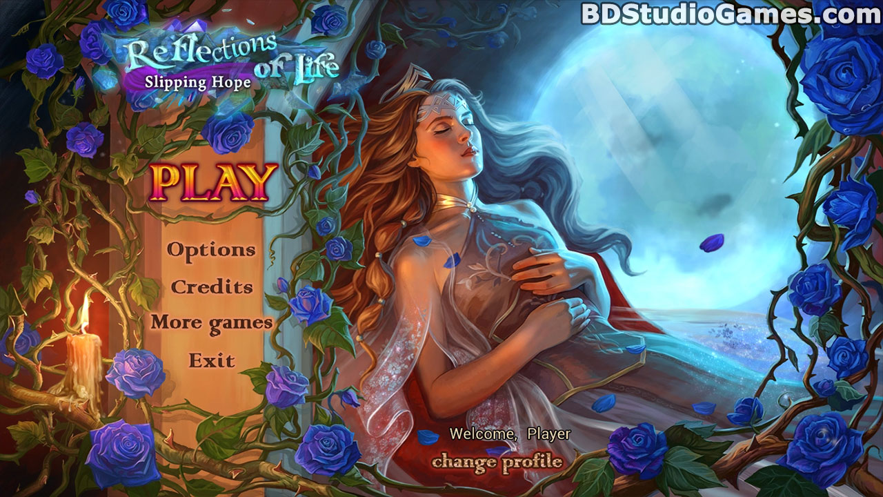 Reflections of Life: Slipping Hope Collector's Edition Free Download Screenshots 1