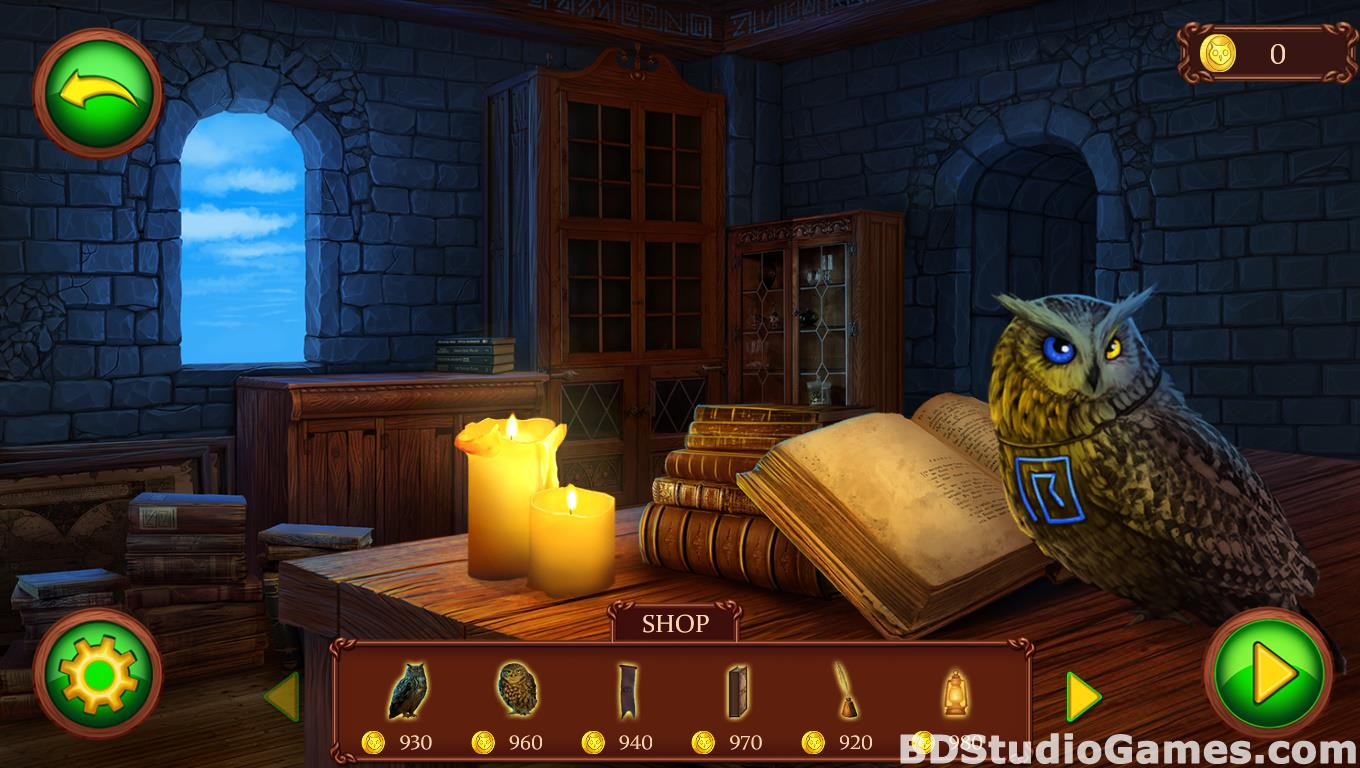 Riddles of the Owls Kingdom: Magic Wings Free Download Screenshots 04